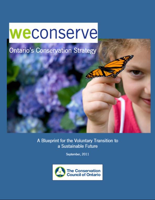 ccostrategy2011